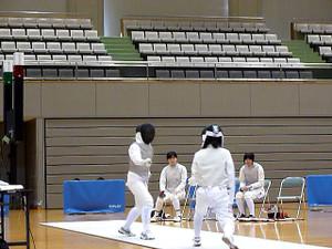 Fencing_01_2